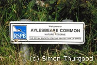 [Aylesbeare Common]