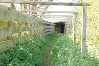 [entrance to one of the hides]